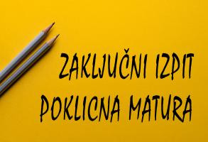 Splošni podatki o poklicni maturi in zaključnem izpitu 2020
