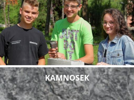 Kamnosek