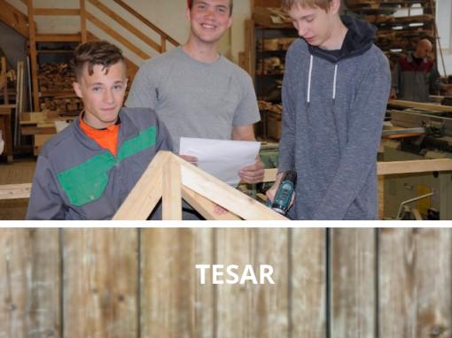Tesar